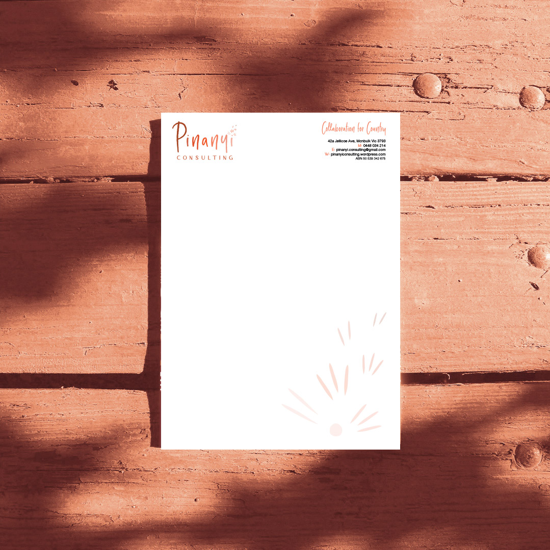 Pinanyi Consulting letterhead
